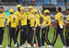 Zalmis finding every reason to celebrate - PSL Peshawar Zalmis
